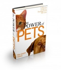 The Official Launch of The Power of Pets – 7 Effective Tools to Heal From Pet Loss